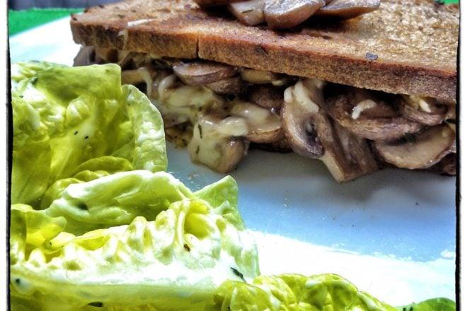 gegrilltes champignon k se sandwich schnelles mittag oder abendessen. Black Bedroom Furniture Sets. Home Design Ideas